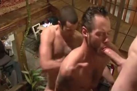 banging Around The abode - Damon Doggs sex ball sperm Factory