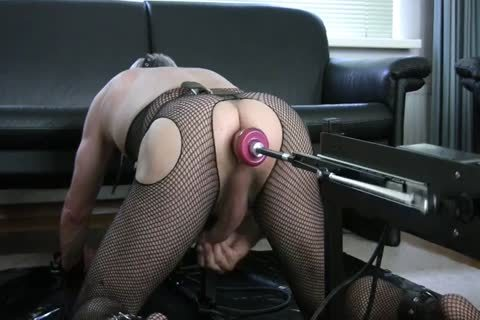 fastened Up In My doggy style Stockade Being nailed By A Machine