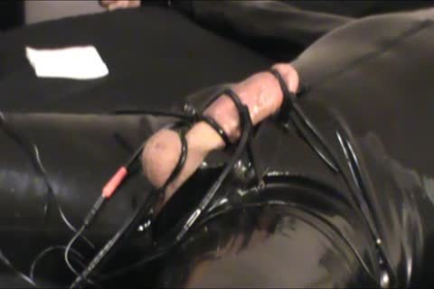Iliff Applies Electro To Vidar's 10-Pounder For Over An Hour And acquires Three delicious Orgasms.