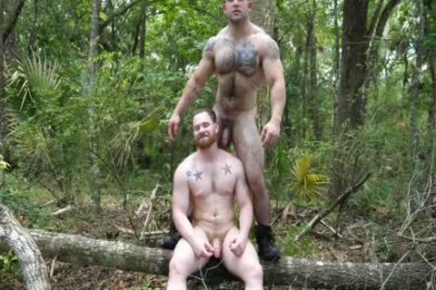 two Swinging penises In The Woods
