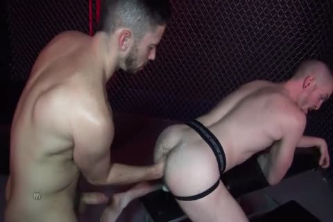 Gaytanamo two #three - Owen Powers & Matt Wylde (2017)
