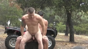 delicious Rider two - large knob nail