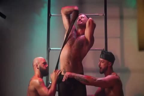 homosexual dilettante Muscle Hunks sucking And fucking