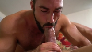 IconMale - Hairy Jaxton Wheeler together with Max Stark rimjob